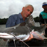 Jeremy Wade holds a 72-pound, 5-foot-long piraiba catfish. These formi