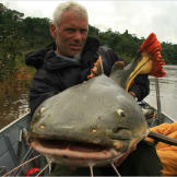 Jeremy Wade with a red-tailed catfish. This fish has a wide mouth with