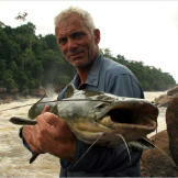 Jeremy Wade with a Jau catfish (Zungaro zungaro). A powerful and sinister-looking fish, the Jau has dark skin to blend in with the deep, rocky pools where it lives, and a muscular midriff and chunky tail for swimming against strong currents.  More Killer Fish Photos | About the Piraiba Catfish | A Growling Piraiba Catfish (video) | Air-Breathing Catfish (video) | A Muscular Amazon Catfish (video) | Fish Swims Up Urine Stream (video)