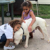 Little girls bring Comanche in the back yard, hugs all around. Comanch