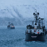 The Kodiak and Wizard head out to the open sea past the snow-covered m
