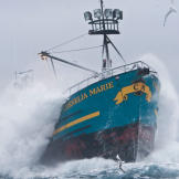 The Cornelia Marie plows through frigid seas during the 2010 Opilio fi