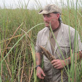 Dave heads out into the saw grass to gather up cattails, one of the mo