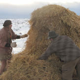 Cody and Dave rearrange a nearby hay bale into a temporary shelter. Th