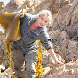 Ruth drags bull kelp onto shore in Tasmania. She'll use it to craft a