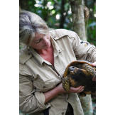 The Hawkes face a dilemma that threatens their survival -- and their relationship -- when Mykel catches a turtle for dinner. Ruth grew up with pet turtles, and truly loves the creatures. The thought of eating this one, found on the jungle floor, is more than she thinks she can handle.