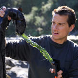 Bear Grylls holds up his dinner, an eel that he lured with a piece of