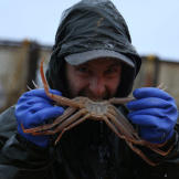 Hmm, is this the correct way to eat a crab?