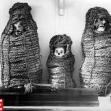 Peruvian Mummies. Archaeologists believe that many Incan mummies, incl