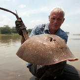 Jeremy Wade with a stingray.