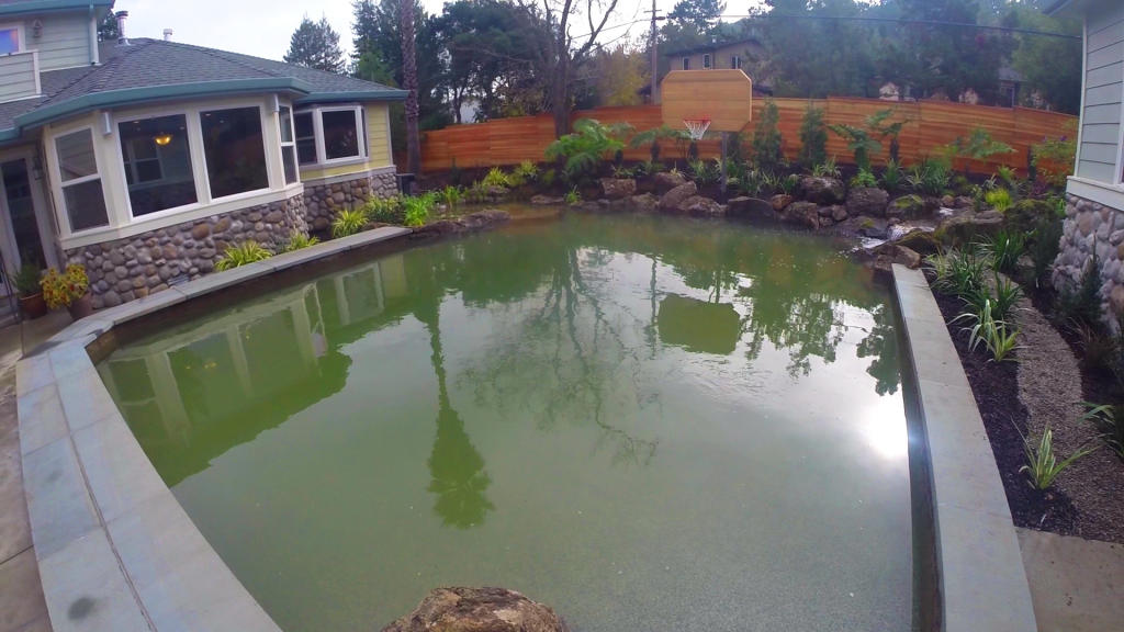 Sporting pool the pool master animal planet for Rocky mountain house swimming pool schedule