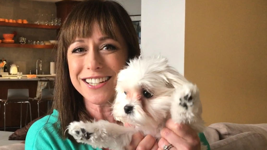Paige Davis Returns To Host Trading Spaces Tlcme Tlc