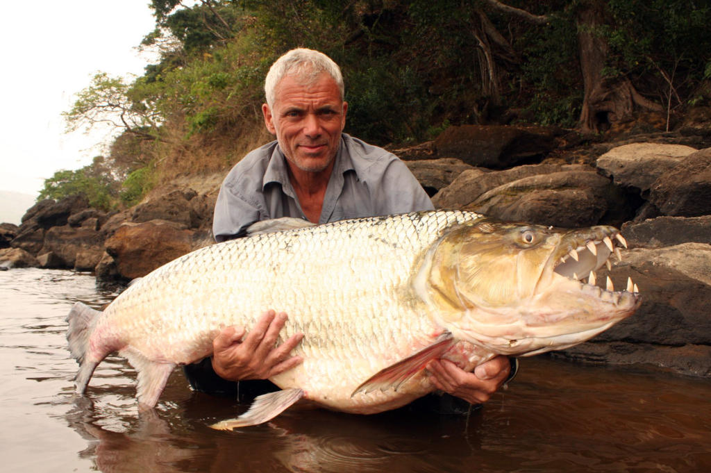 Goliath tigerfish river monsters animal planet for Monster fish show