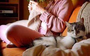 Top 10 Myths About Cat People