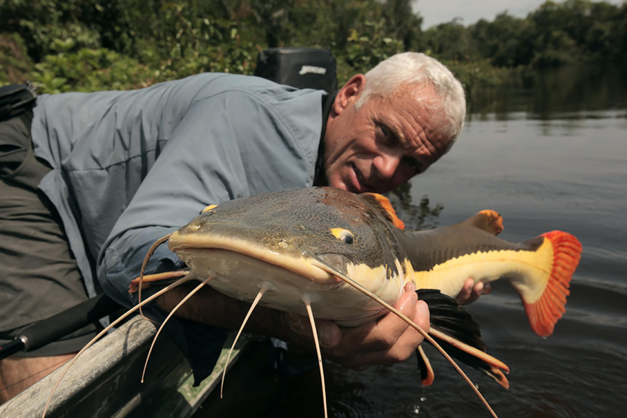 Jungle terminator pictures river monsters animal planet for Jeremy wade fishing rod