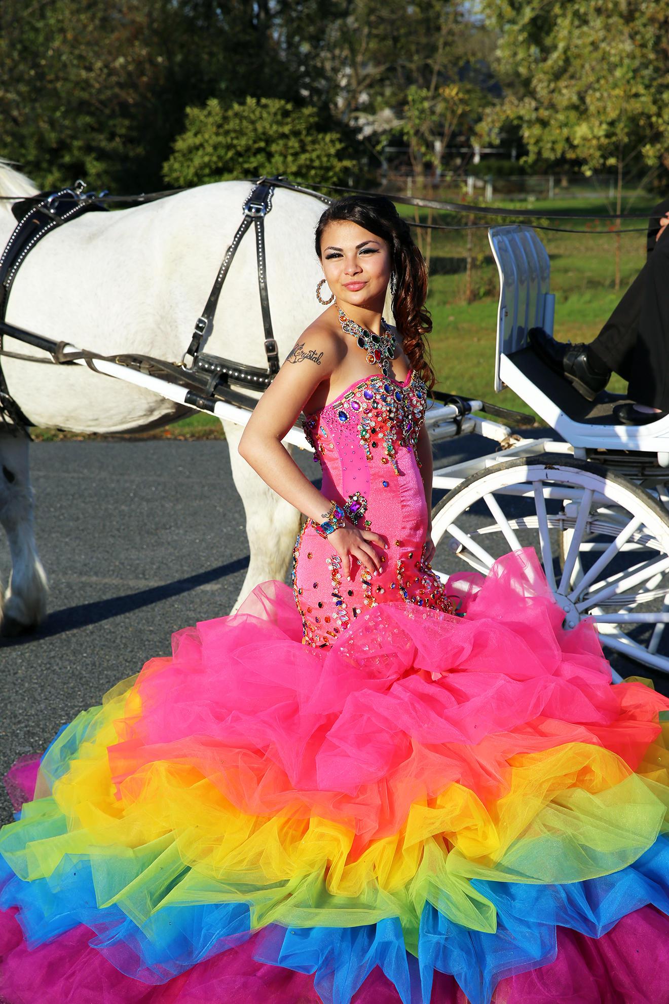 Excelente My Big Fat Wedding Dress Viñeta - Colección de Vestidos de ...