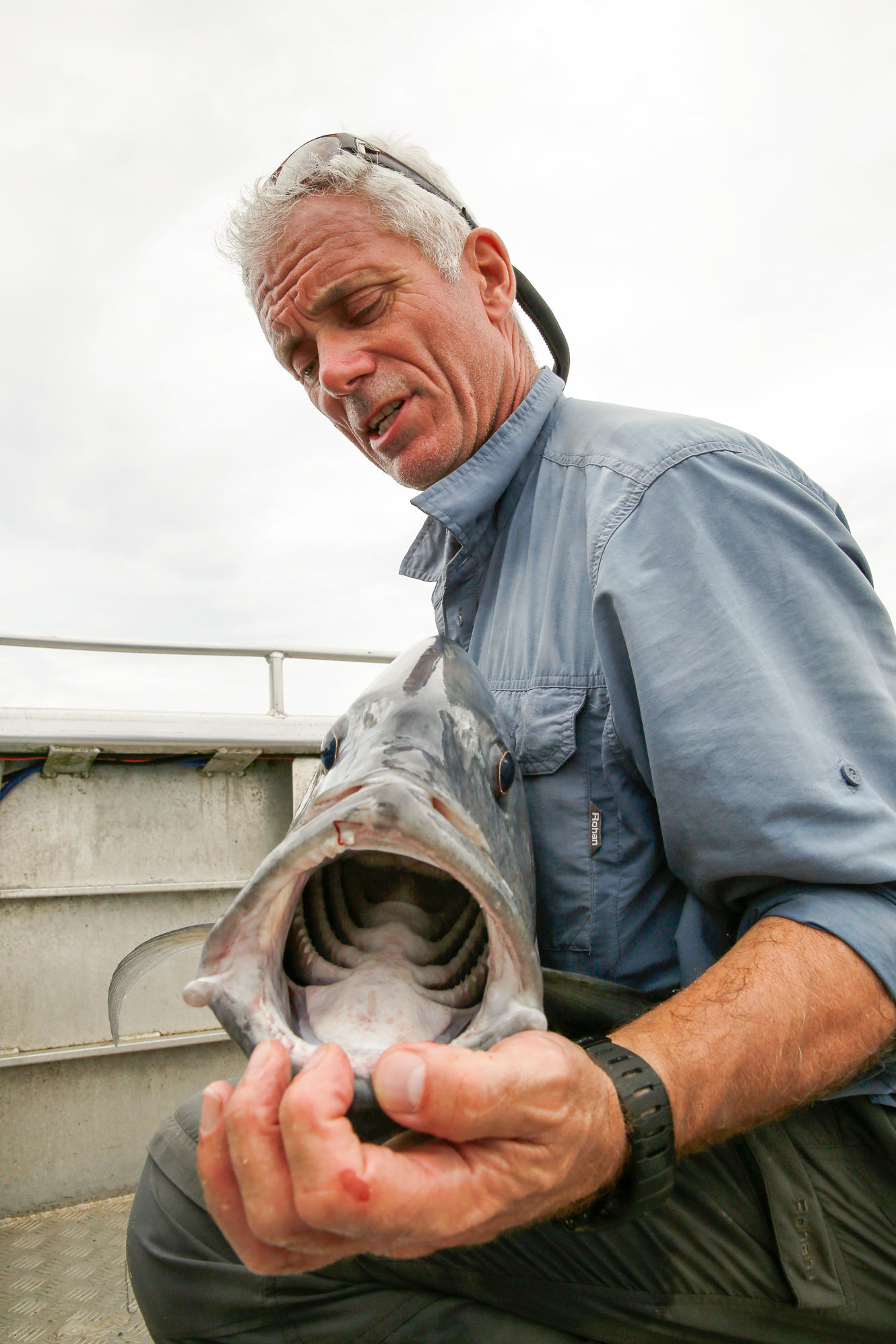 south pacific terrors episode photos river monsters animal planet