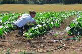 LPBW Roloff Farms 11
