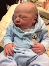 Seewald Baby_001
