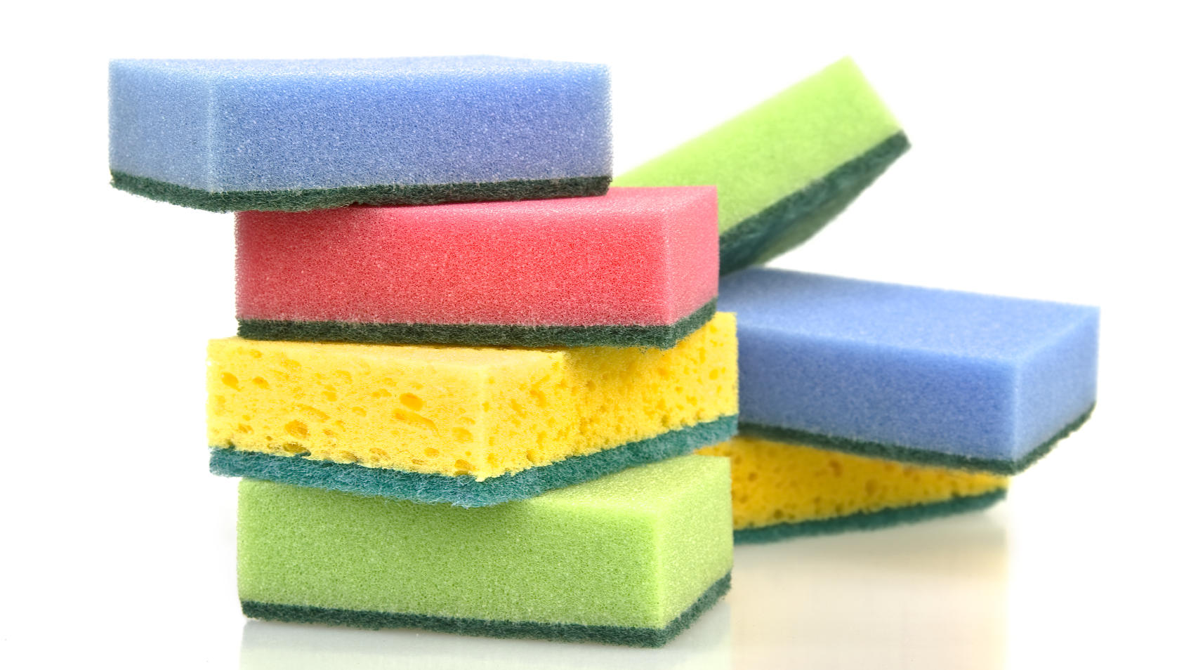 Seriously, you need to wash your sponges.