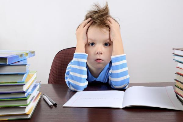 Homework education service