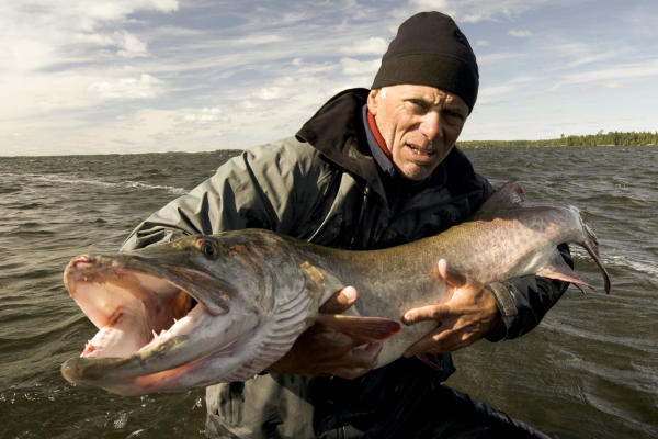 River monsters animal planet for Monster fish show
