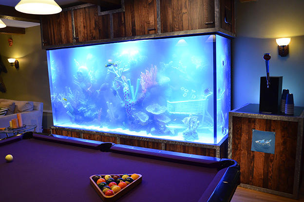 Tanked best aquariums 1000 aquarium ideas for Atm fish tank