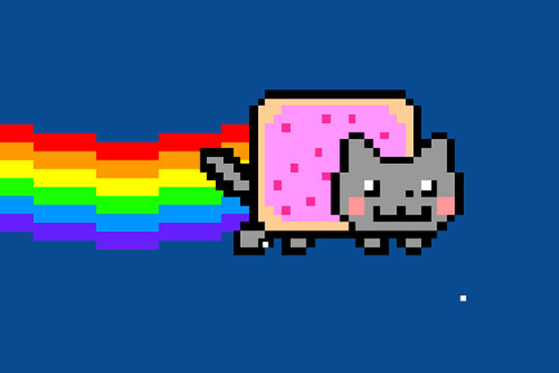 Nyan Cat Animal Planet